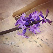 Роман в письмах